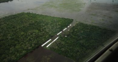Inundaciones: sólo en cultivos, los productores santafesinos perdieron U$S 230 millones