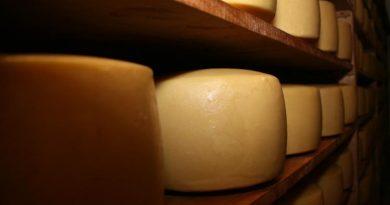 Proyectan más exportaciones lácteas