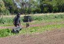 Aumento del 28% para peones rurales: cómo quedan las nuevas escalas salariales