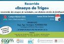 INTA Brinkmann invita a «Recorrida de Ensayo de Trigo»