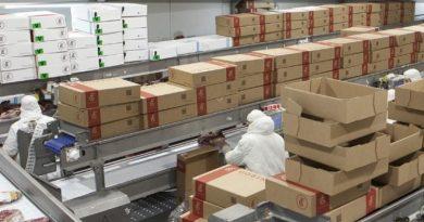 El Gobierno Nacional reabrirá exportaciones de carne a partir de la semana próxima