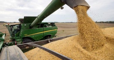 Por la suba de precios, la cosecha 2020/21 podría marcar un ingreso récord de dólares en Córdoba