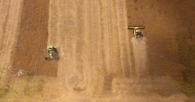 Argentina cumple dos décadas como el país que menos apoya a sus productores