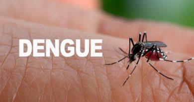 La Provincia informó más casos de Dengue en Brinkmann – 225 confirmados
