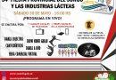 Suardi: Se viene el modo virtual de la «54* Fiesta Provincial del Sorgo»