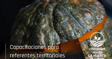 La Huerta en tu Hogar: capacitaciones para referentes territoriales
