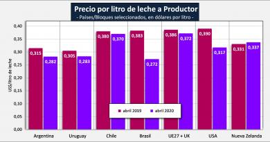 Lechería: la caída del precio al productor también es una pandemia global