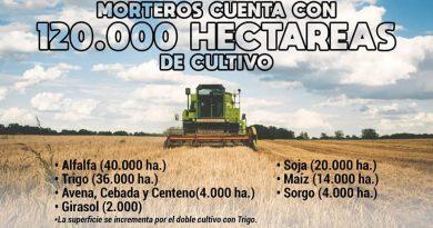 Morteros cuenta con 120 mil hectáreas de cultivo segun trabajo de CoopMorteros