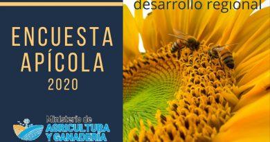 """(🔊) – Desde INTA Brinkmann Marcela Leiva explica alcances de la """"Encuesta Apícola 2020"""""""