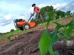 """Dos ultimas jornadas de la """"Semana de la Enseñanza Agropecuaria"""""""