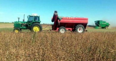 En medio del desplome de la economía, el agro fue una de las actividades que menos cayó