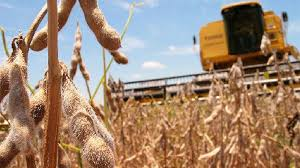 """Alberto Fernández dijo que la soja """"desempleó"""" gente en el campo y habló de """"agrotóxicos"""""""