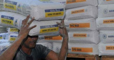 Una pandemia con el pan garantizado: la molienda de trigo es la más alta en 8 años