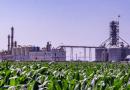 Ley de Biocombustibles: habrá beneficios en el pago de Ingresos Brutos y del Impuesto Automotor