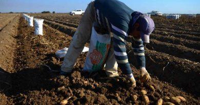 Trabajadores rurales: el salario mínimo sube 32%