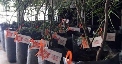 Agricultura entrega arboles a Organizaciones de la Agricultura Familiar que trabajan con víctimas de violencia de género