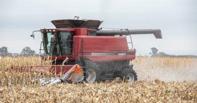 En 2020, el agro tuvo la mayor participación en las exportaciones desde 1988