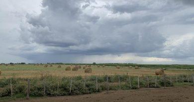 """Lluvias: abril dejó registros dispares y el resto del otoño se confirma como """"neutro"""""""