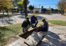 CoopBrinkmann inició el tendido de fibra óptica al Parque Industrial